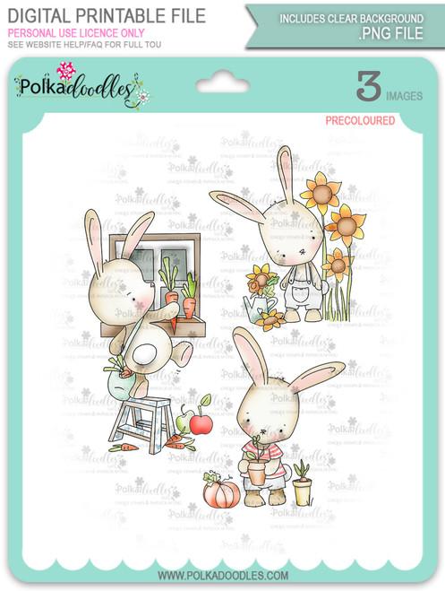 Gil Rabbit precoloured digi stamp bundle