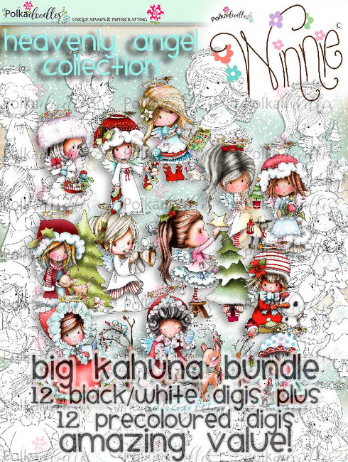 USB VERSION - Big Kahuna Winnie Angel FULL bundle