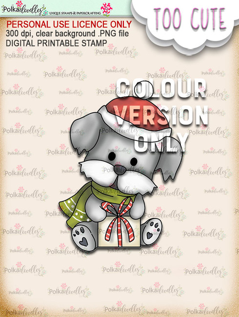 Cooper Gift Box - Coloured - Too Cute digital papercrafting download