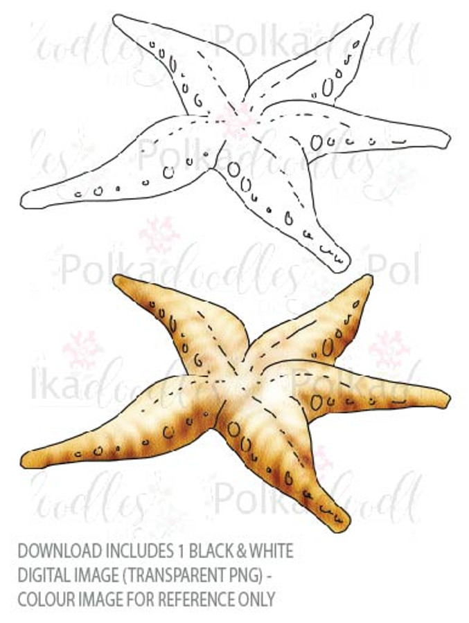 Winnie Starfish/Sandcastles - Starfish DOWNLOAD
