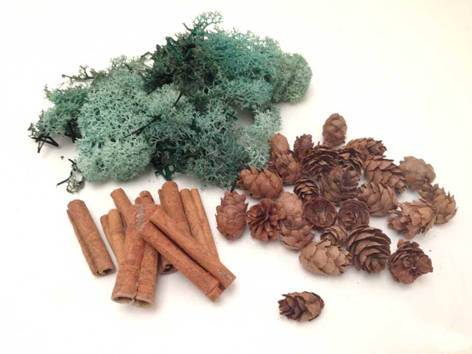 Winter's Breath Embellishment kit - reindeer moss, pine cones and cinnamon sticks