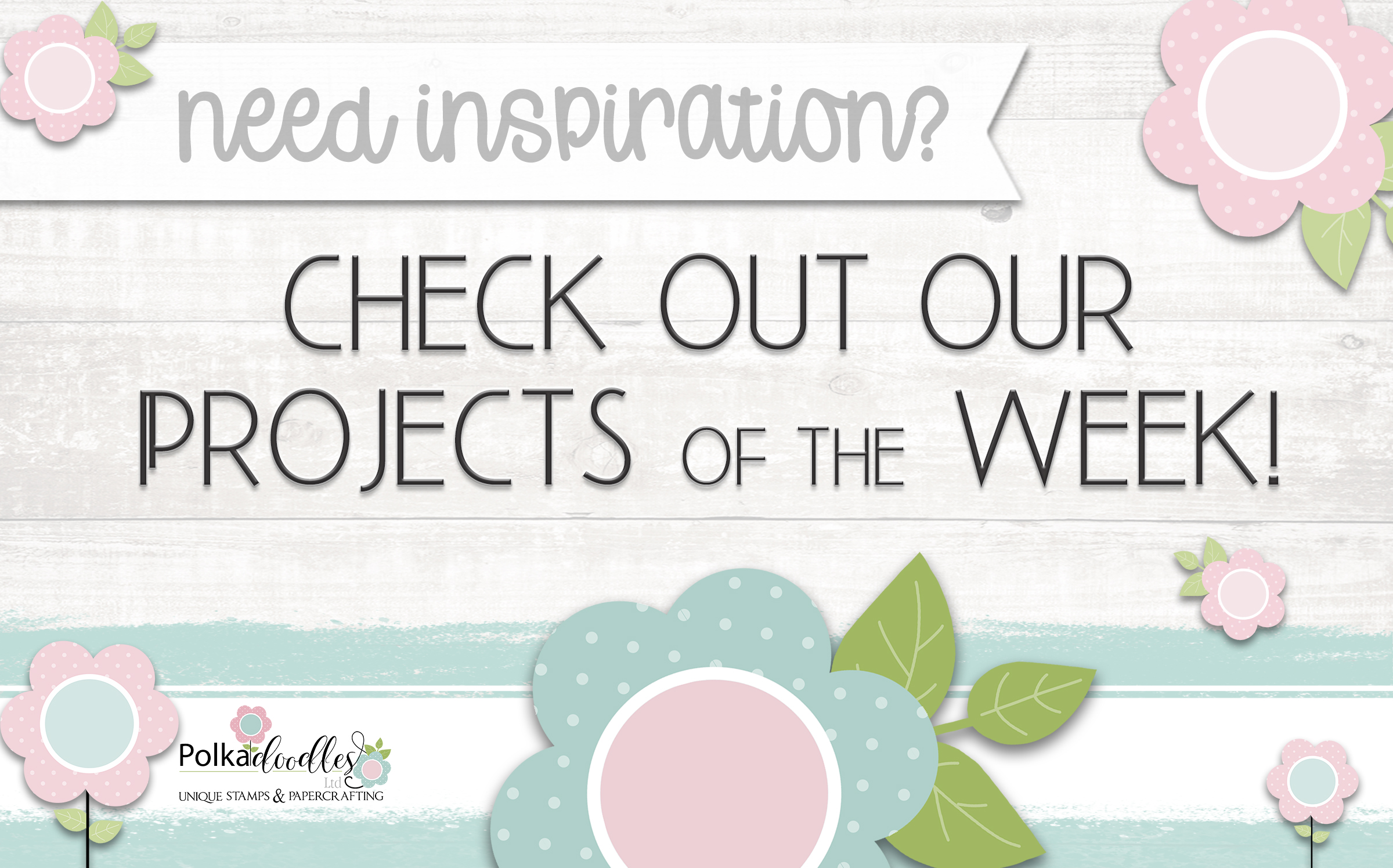 check out our projects of the week from our Design Team!