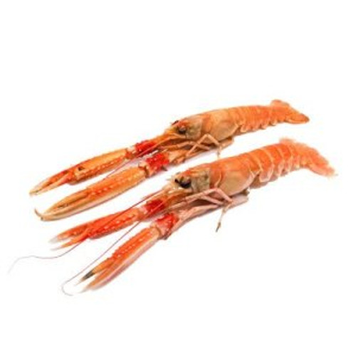 Langoustines - U5 Wild - avg. 3 lbs - Package of 1 - Frozen