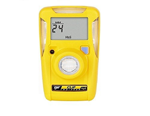 BW Technologies BWC2-H BW Clip Single Gas H2S Monitor