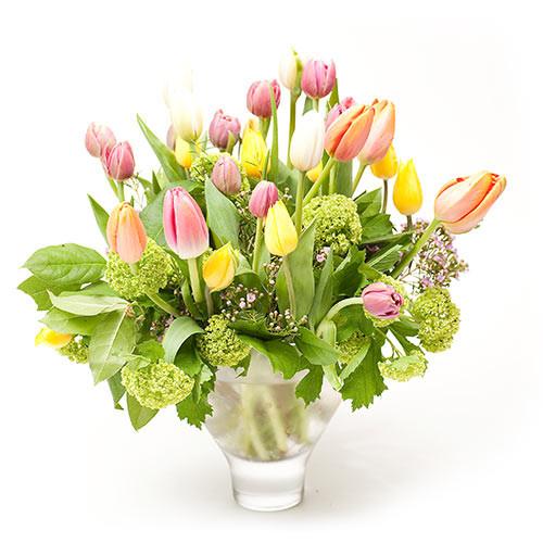 Dozen Tulips