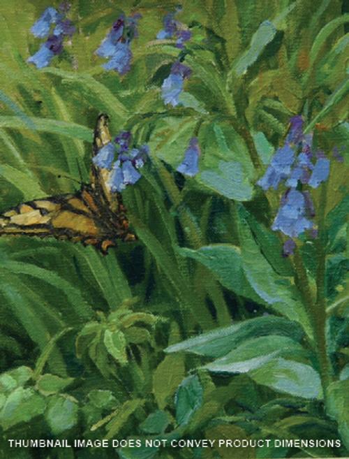 Tiger Swallow