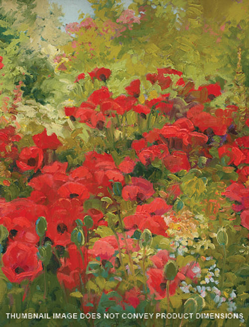 Poppies Bright Big Red