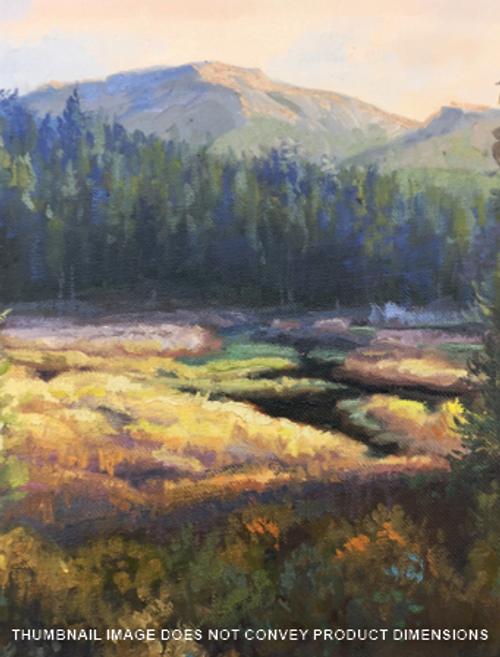 Meadow in the Light