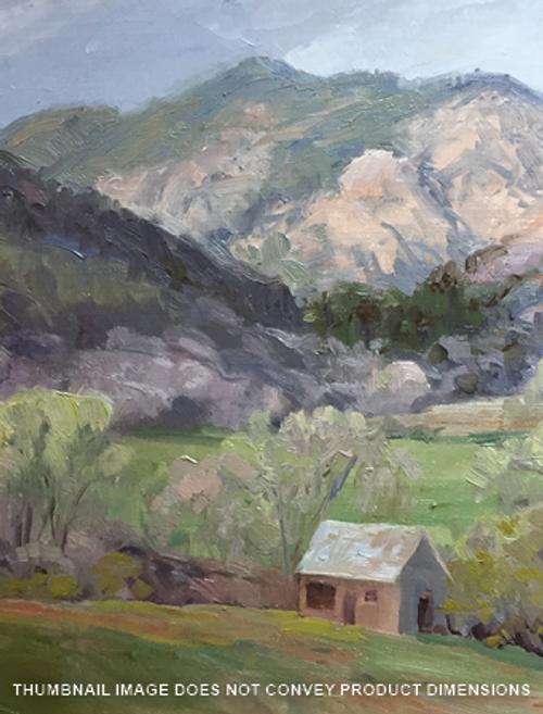 Julie Rogers Cabin Property