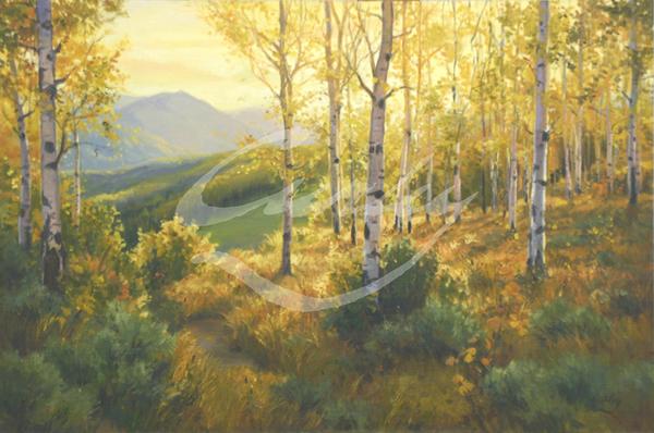 Linda Curley Christensen Light on the Ridge