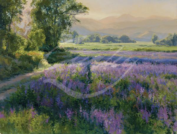 Linda Curley Christensen Purple Wildflowers