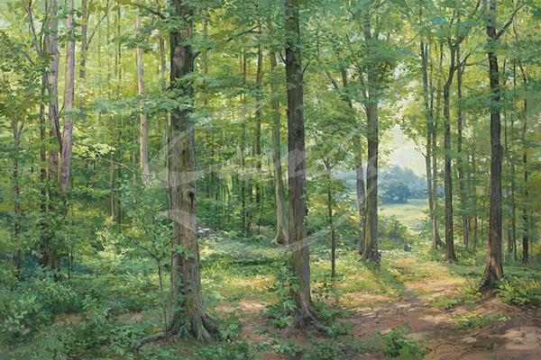 Linda Curley Christensen Sacred Grove 1907