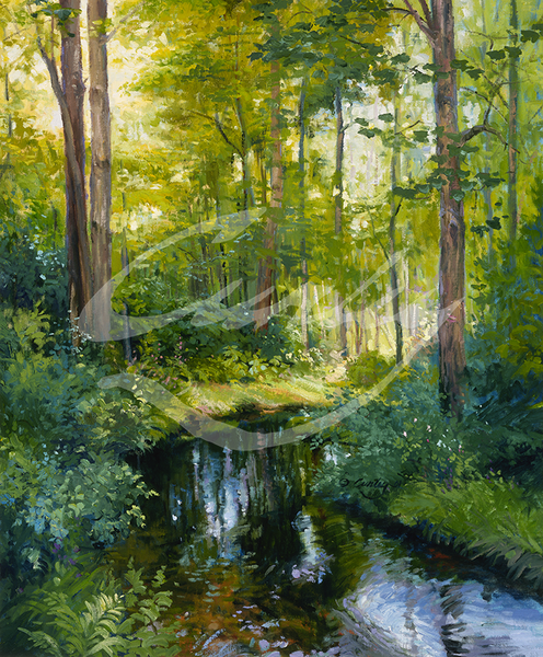 Linda Curley Christensen Shaded Waters