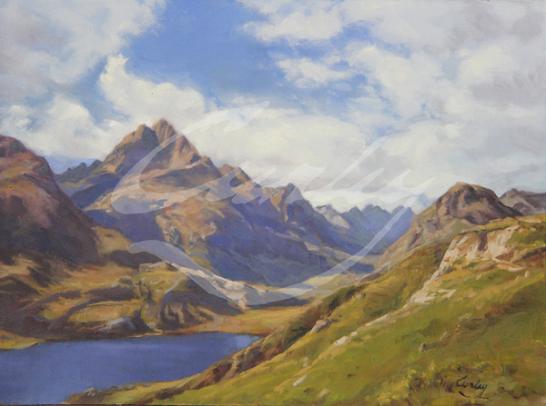 Linda Curley Christensen Andes Mountains in Green