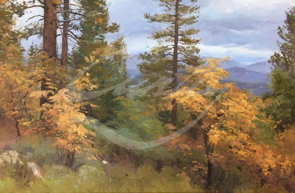 Linda Curley Christensen Above Shafer Lake