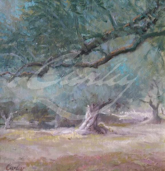 Linda Curley Christensen Garden and Olive Orchard of Gethsemane