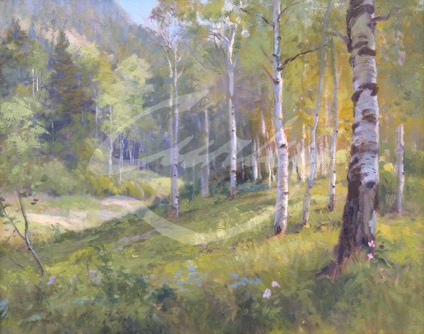 Linda Curley Christensen Aspens Ephriam Canyon