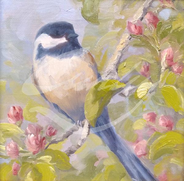 Linda Curley Christensen Chickadee on a Cherry Blossom