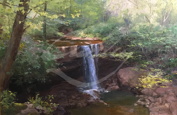 Linda Curley Christensen Cucumber Falls in Spring
