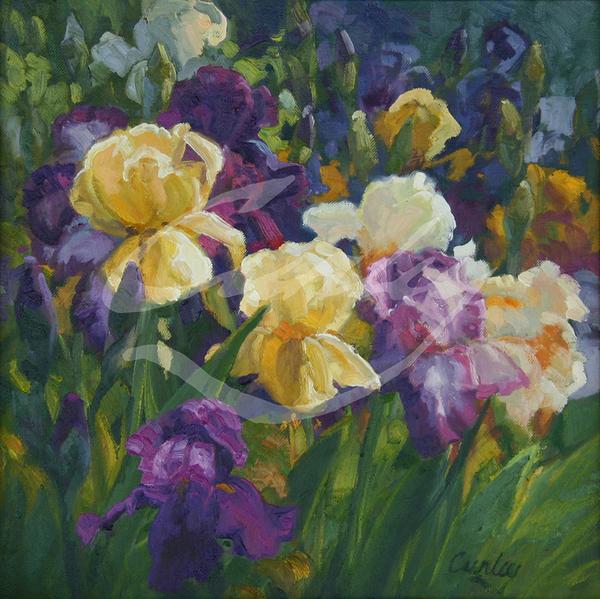 Linda Curley Christensen Royal Gold Iris