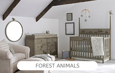 forest-animals-collection.png
