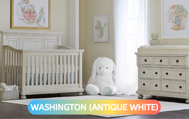 washington-antique-collection-pic.png