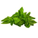 Fresh Basil - 2.5oz