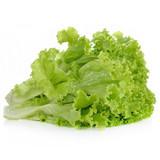 Green Leaf Lettuce - 1ct