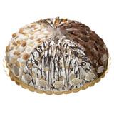 Assorted Cream Nougat Cake - 5.82oz x 20