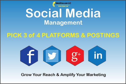 Pick 3 of the 4 platforms for social media marketing postings