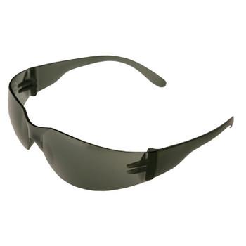 17501 ERB Economy IProtect Smoke frame, smoke lens Eye Protection