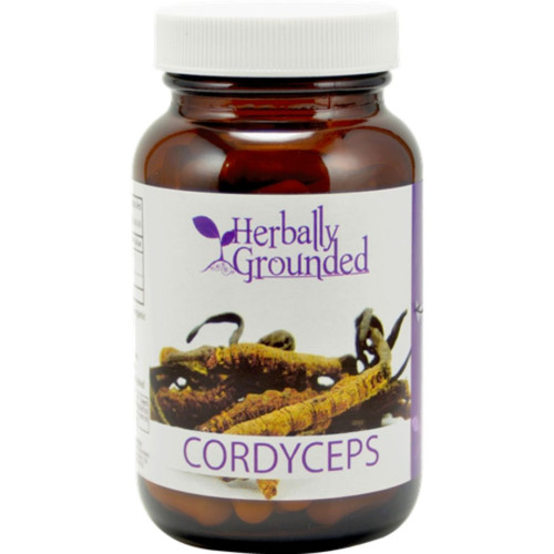 Herbally Grounded Cordyceps