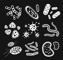 microbe-200.jpg