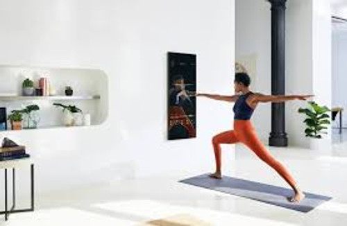 Mirror interactive home fitness system