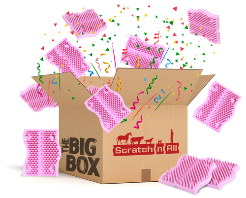 25-Pack Big Box > Pink