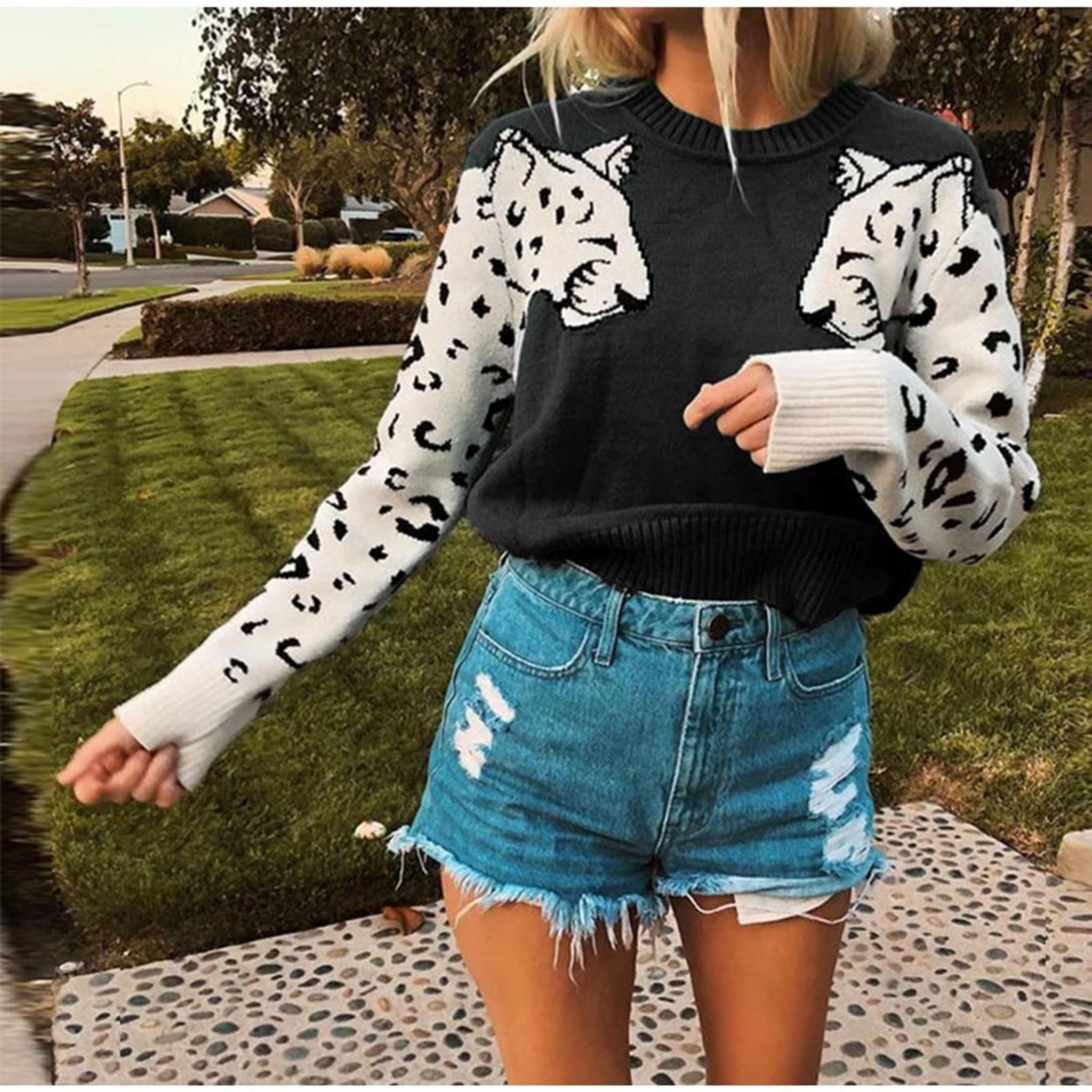 Leopard Style Sweater