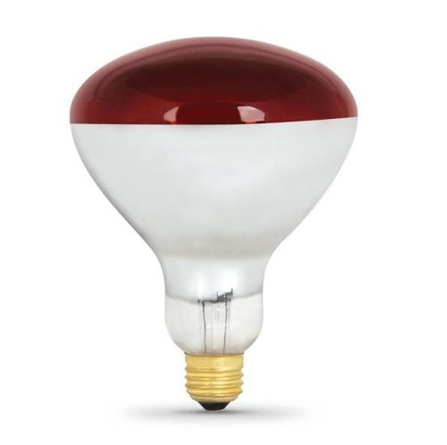 Infrared Light Bulb