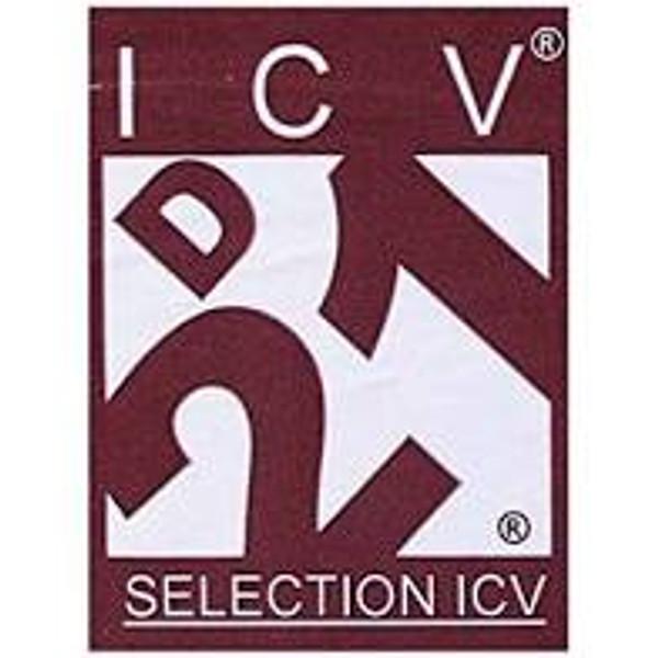 ICV D21 - 8 g