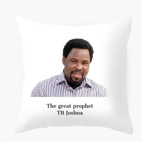 Tb Joshua pillow