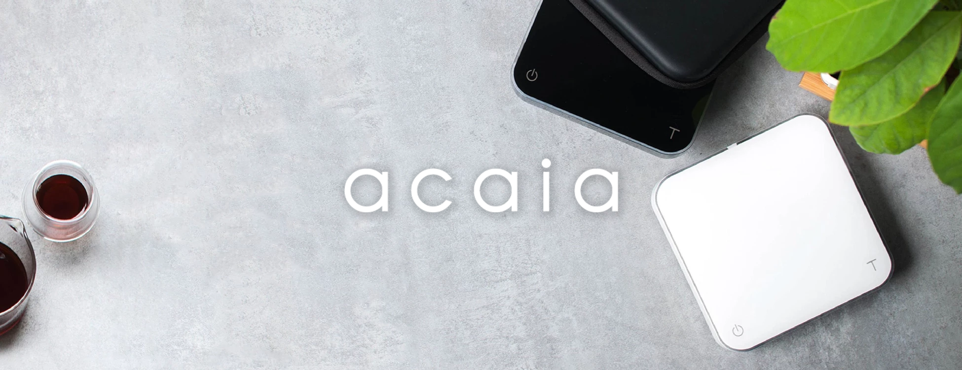 acaia-landing-page-banner.png