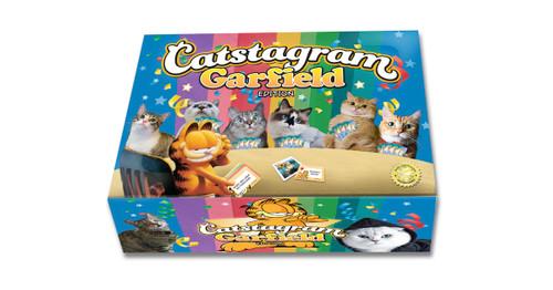 Catstagram: Garfield Edition