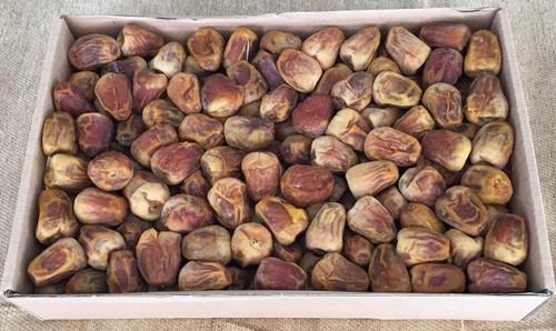 ثمانية كراتين سكري فاخر (فلة)  Eight  Boxes Dry Premium Sukkari Date