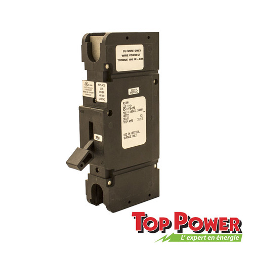 Schneider Breaker 250A 160Vdc Panel Mounted