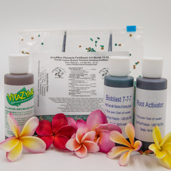 Plumeria Seed and Seedling Starter Kit with Nutrient Kit - Free Shipping