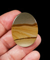 Spectacular American Owyhee Picture Jasper Cabochon - rear view