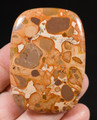Large Leopardite Jasper Cabochon - inverted