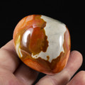 Beautiful Polychrome Jasper Palm Stone - view 2