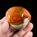 Beautiful Polychrome Jasper Palm Stone - view 4