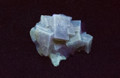 Fluorescent Yellow Cubic Fluorite Mineral Specimen from Morroco, 44x32mm - SW UV Light - view 2