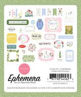 Flora no. 4 Ephemera
